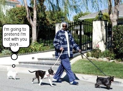 snoopdog_dogs